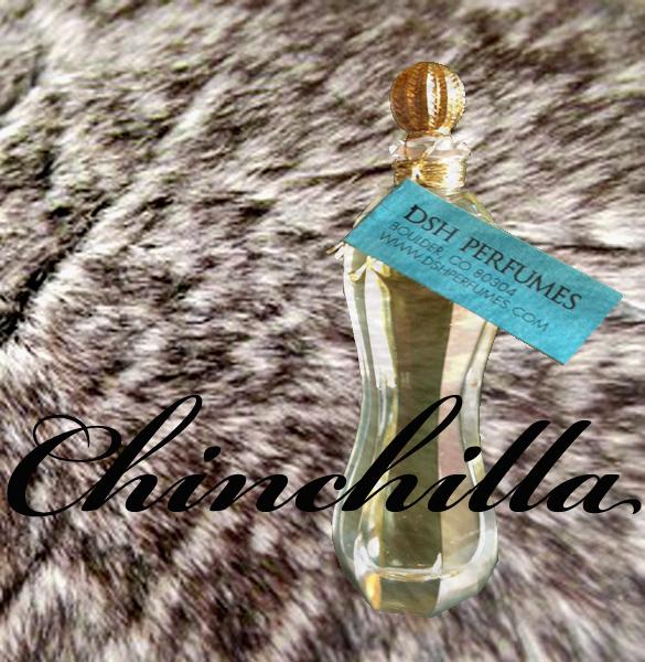 chinchilla_square_dsh