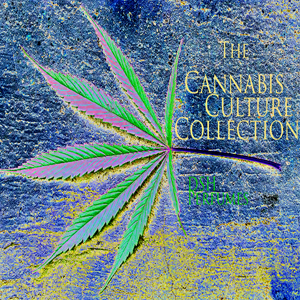 cannabis_culture_image_web