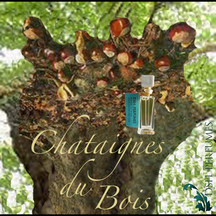 chataignesdubois_square11